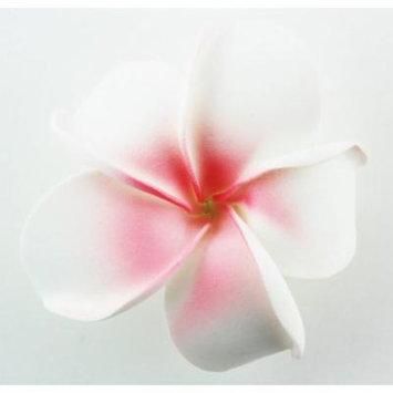 Hawaiian Flower Hair Clip Tropical Flower Summer Hair Accessory (White Pink)