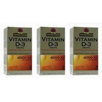Nature's Answer Vitamin D-3 Drops 4000 LU, 3 Count