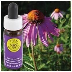 Flower Essence Echinacea Dropper - 0.25 fl oz