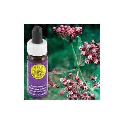 Flower Essence Services - Milkweed Flower Essence - 0.25 oz. CLEARANCE PRICED
