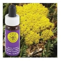 Flower Essence Services - Golden Yarrow Flower Essence - 0.25 oz.