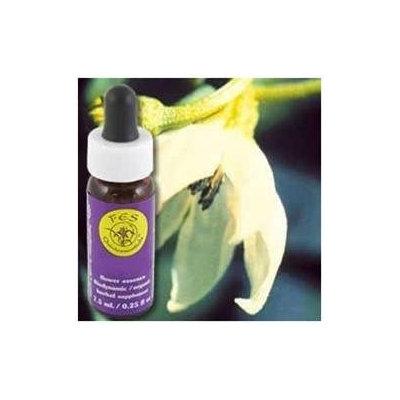 Flower Essence Cayenne Dropper - 0.25 fl oz