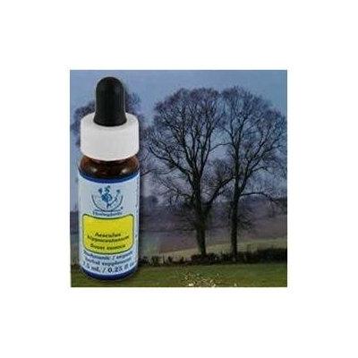 Flower Essence Services - Healing Herbs Dropper Elm - 0.25 oz.