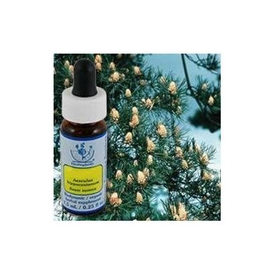 Flower Essence Services - Healing Herbs Dropper Pine - 0.25 oz. CLEARANCE PRICED