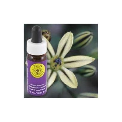 Pretty Face Dropper, 0.25 oz, Flower Essence Services