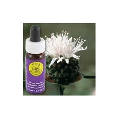 Flower Essence Mountain Pennyroyal Dropper - 0.25 fl oz