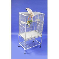 A&E CAGE CO 32-Inch by 21-Inch Flight Cage and Stand, Platinum