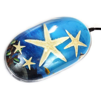 Ed Speldy East CM208 Computer Mouse - Starfish with Ocean Background