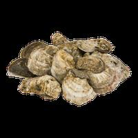 Chincoteague Shellfish Farms Wild Oysters East Coast - 12 CT