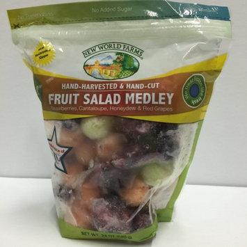 Frozen Foods Nwf Fruit Salad Medley 24oz