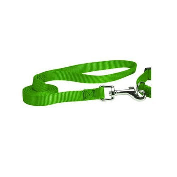 Guardian Gear Pet Lead Leash - Electric Lime