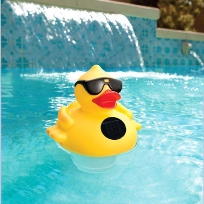 Swim Time Derby Duck Solar Light Up Pool and Spa Chlorinator