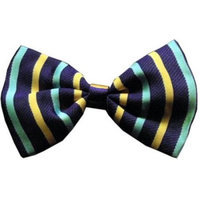 Ahi Dog Bow Tie Purple and Aqua Stripes