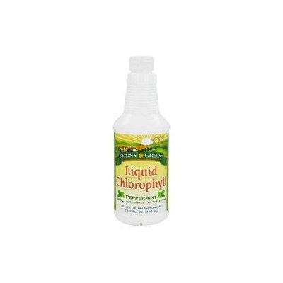 Solaray Liquid Mint Chlorophyll - 16 Fluid Ounces Liquid - Other Green / Super Foods