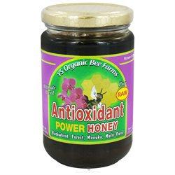 YS Organic Bee Farms - Raw Antioxidant Power Honey - 13 oz.