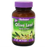 Bluebonnet Nutrition Standardized Olive Leaf Herb Extract