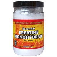 Iron Tek - Essential Creatine Monohydrate Powder - 1.1 lbs.