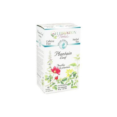 Celebration Herbals Plantain Leaf Tea Caffeine Free - 24 Herbal Tea Bags