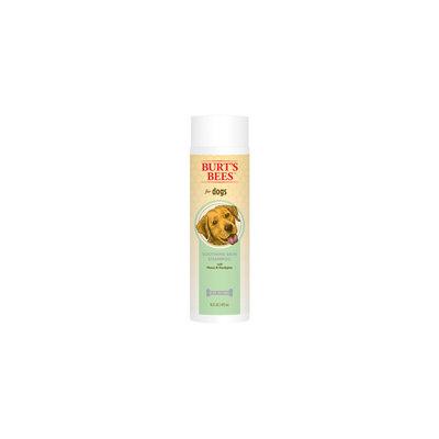 Burt's Bees Soothing Shampoo Honey & Eucalyptus