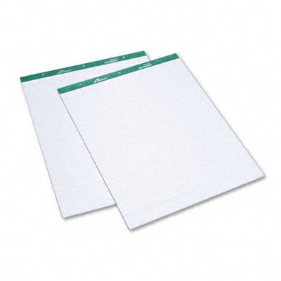 Ampad Envirotec Flip Chart Pads, White, 50-Sheets Pads, 2 Pack