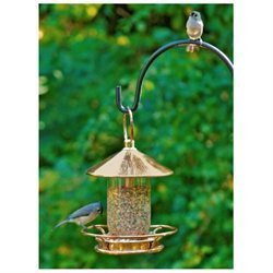 Good Directions, Inc. Good Directions Polished Copper Classic Perch Bird Feeder