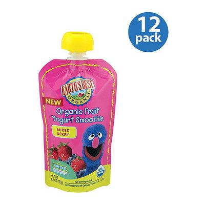 Earth's Best Organic Sesame Street Mixed Berry Fruit Yogurt Smoothie