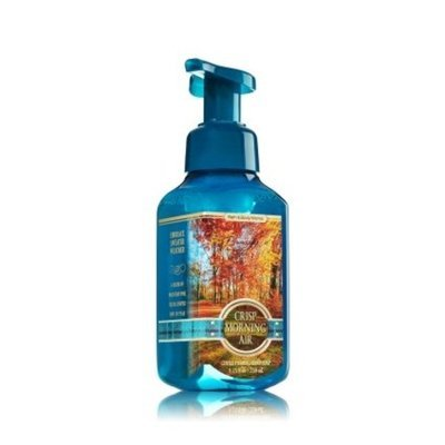 Bath & Body Works Crisp Morning Air Gentle Foaming Hand Soap
