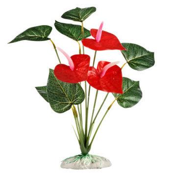 All Living ThingsA Tropical Reptile Plant