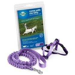 Premier Pet Products - Come Wi
