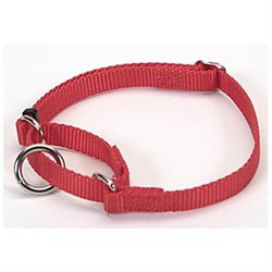 Coastal Pet Products DCP6307RED Nylon No Slip Adjustable Greyhound Collar