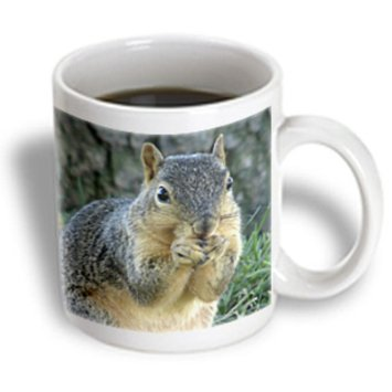 Recaro North 3dRose - Cassie Peters Photography - Squirrel Eating Acorns Photographed by Angelandspot - 15 oz mug