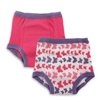 Baby Vision Luvable Friends 2 Pack Water Resistant Training Pants - Butterfly (3T)