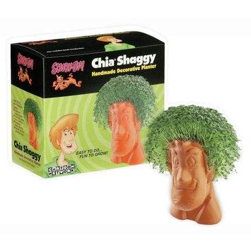 Joseph Enterprises CP 051-16 Shaggy Chia Pet- Case of 16