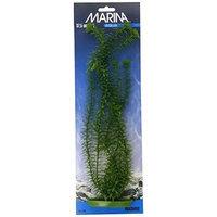 Hagen Marina Aquascaper Anacharis Plant, 15-Inch