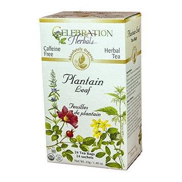 Celebration Herbals Organic Plantain Leaf Tea Caffeine Free -- 24 Herbal Tea Bags