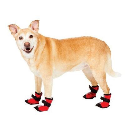 Fashion Pet Essential Dog Boots, Red, Small