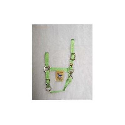 Hamilton Pet Company Hamilton Halter Company - Adjustable Chin Halter With Snap- Lime Average - 1DAS AVLI