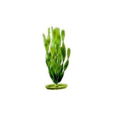 RC Hagen PP814 Marina Jungle Vallisneria 8 in. decorative plastic plant
