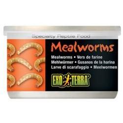 RC Hagen PT1958 Exo Terra Meal Worms, 1.2 oz