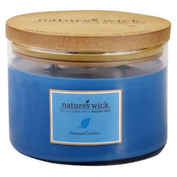 Smith Mountain Industries Nature's Wick Jar Candle - Tranquil Waters
