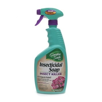 Garden Safe Insecticidal Soap Insect Killer