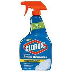 Clorox2 Laundry Stain Remover with Foaming Action 12 oz