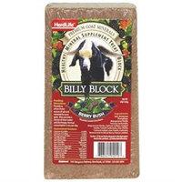 Evolved Habitats 4 Lb Animal Mineral Block Goat Billy Berry