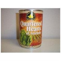 International Bazaar 107-21852-89614-2 Artichoke Hearts Quartered