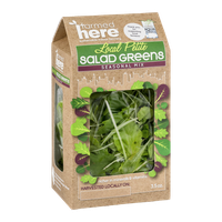 FarmedHere Local Petite Salad Greens Seasonal Mix