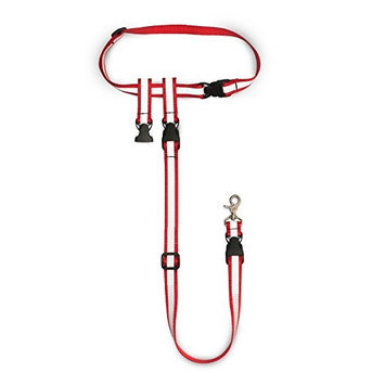 Buddy System Pet Leash The Buddy System Dog Leash - Reflective In Size: Large