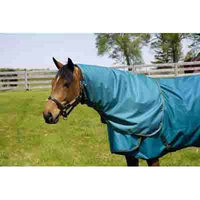 Hug Abrazo Turnout Blankets Neck Cover Large Teal/Orange
