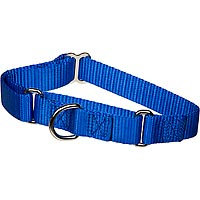 The Grrrip X-tra Control Collars, Small, Color: Blue