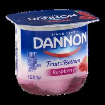 Dannon Fruit on the Bottom Lowfat Yogurt Raspberry