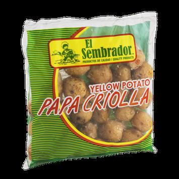 El Sembrador Yellow Potato